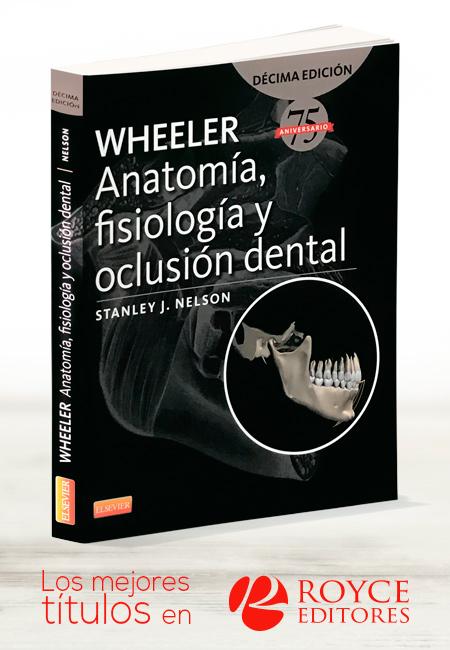 WHEELER Anatomía, Fisiología y Oclusión Dental, Más LIBROS Tu Tienda ...